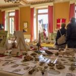 Exposition mycologique 8 octobre 2017 à la Mairie de la Roche sur Foron