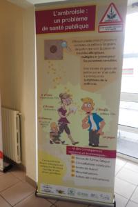 L'ambroisie : un problème de santé publique