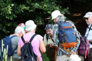 Groupe très attentif aux explications de Charline ; sortie papillons Bois des Fournets (sur Saint-Sixt et Amancy, 74), ©Photo Alain Benard