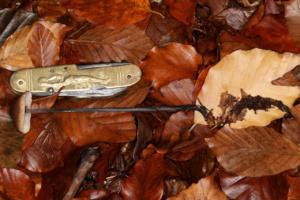 Marasmius alliaceus (couteau 9,6 cm), Marasme à odeur d'ail, La Trappe (Onnion, 74), ©Photo Alain Benard